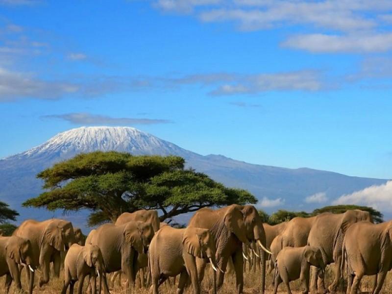 3 Days Amboseli Camping Safari