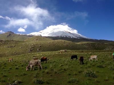 Climb to Ararat
