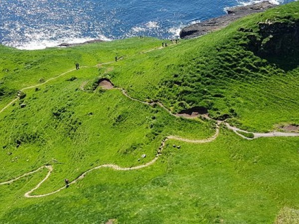 """Mykines """"Puffin Island"""" Whole Day Tour"""