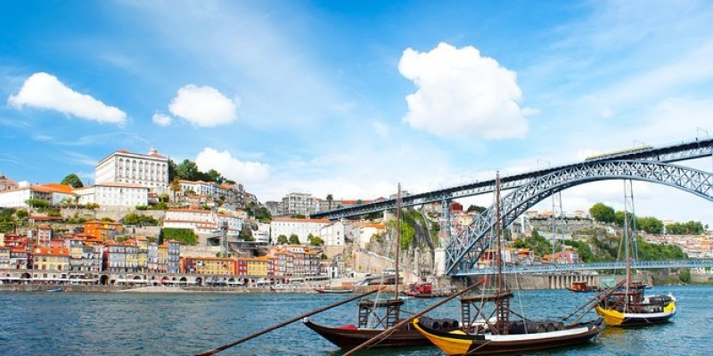 Porto Full Day Trip - Private Tour from Lisbon