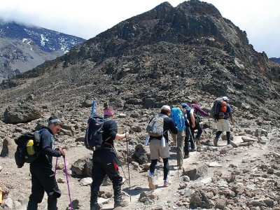 8 Days Lemosho Route – Best To Pick Instead Of 7 Days Lemosho Route