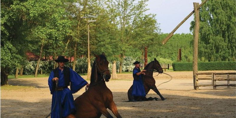 Budapest Puszta Day Trip with Kecskemet, Horse Show, and Lunch