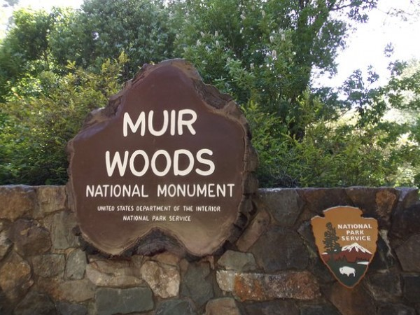 Muir Woods and Sausalito Half Day Tour (Optional Sausalito Ferry Ticket)