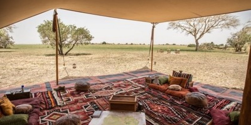 3-Day Camping Safari in Khwai Concession, Botswana