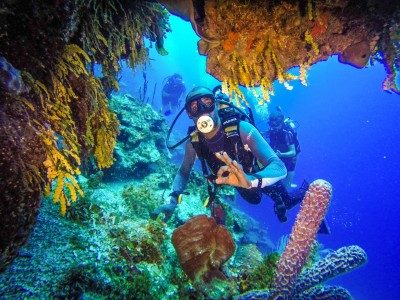 Catalina Island Tour from Punta Cana