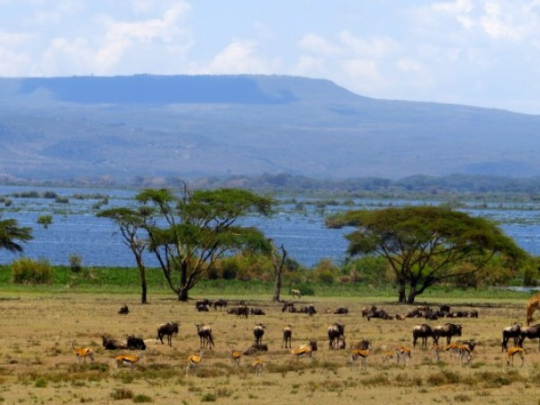 8 Days Kenya Camping Adventure Safaris