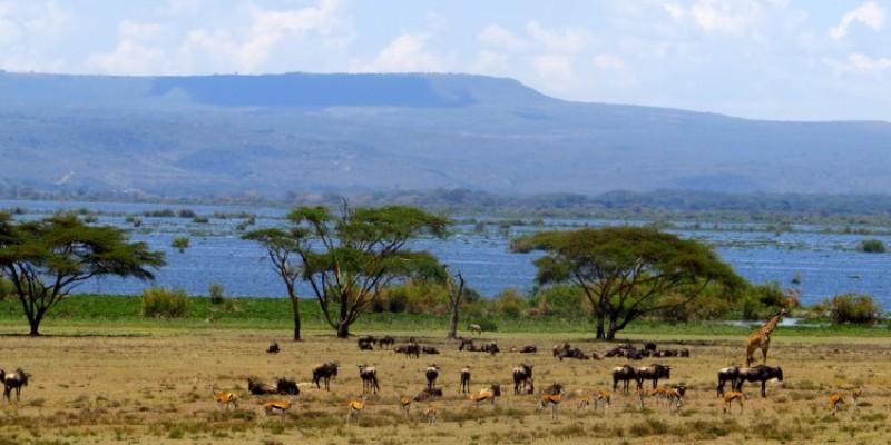 8 Days Kenya Camping Adventure Safaris