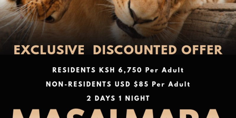 Limited Offer 2 Days 1 Night Masai Mara Safari