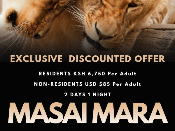Limited Offer 2 Days 1 Night Masai Mara Safari