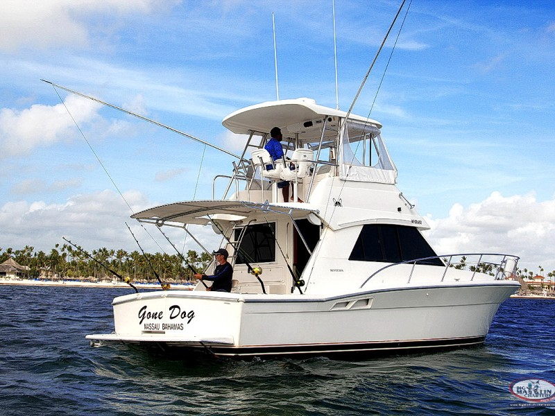 4hrs. Offshore Private Fishing Charters