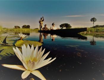 Relax On A Mokoro Ride In The Okavango Delta
