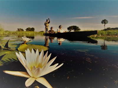 Relax On A Mokoro Ride In The Okavango Delta