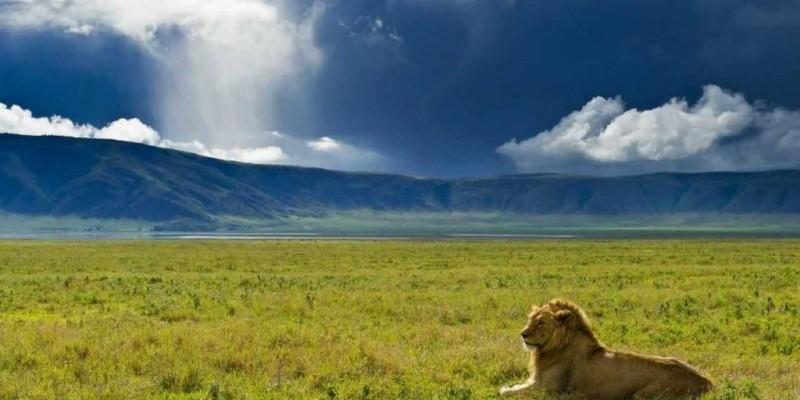 6day Tanzania Camping Safari