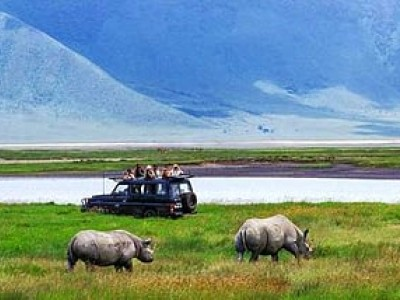 a Day Tour to Ngorongoro Crater National Park