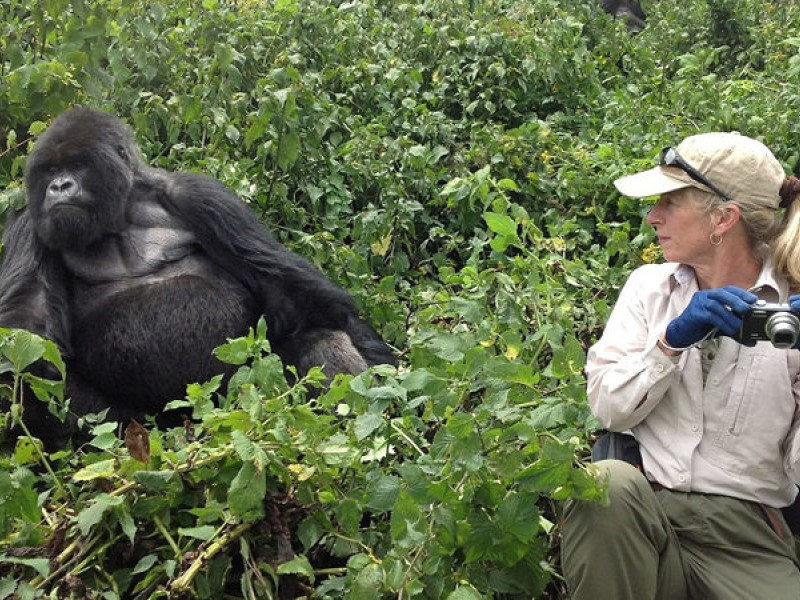 10 DAYS RWANDA EXPLORATION – WILDLIFE, GORILLAS, CHIMPS & GOLDEN MONKEYS