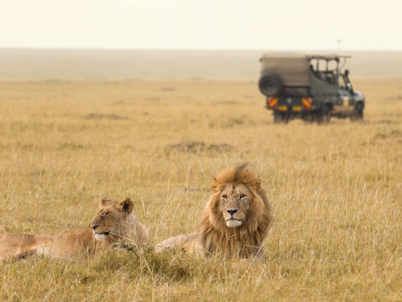 6 Day Budget Tanzania Safari Tour Packages: Lake Manyara National Park, Serengeti  National Park, Tarangire National Park, Ngorongoro crater, and Arusha National park.