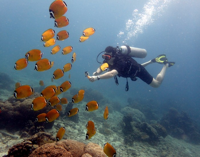 Scuba diving for absolute beginners in Samui