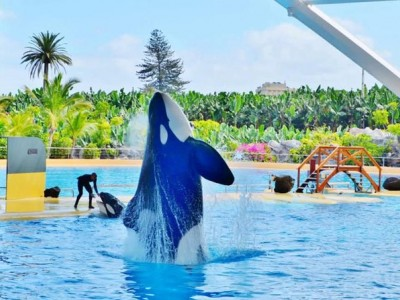 Loro and Siam Park Twin Ticket