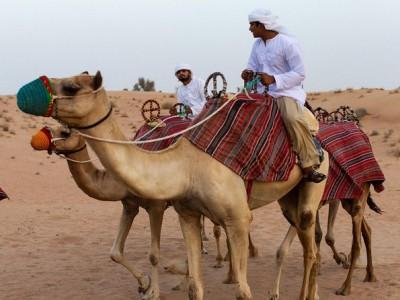 Desert Experience: Camel Safari with Dinner and Emirati Activities from Dubai